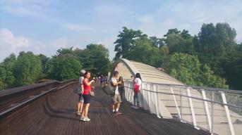 Singapore Gardens 6