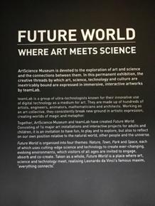 art-science-museum-singapore
