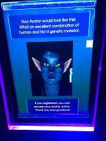Making an Avatar